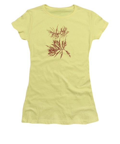 Women's T-Shirt (Junior Cut) featuring the mixed media Ocean Seaweed Plant Art Laurencia Tenuissima by Christina Rollo