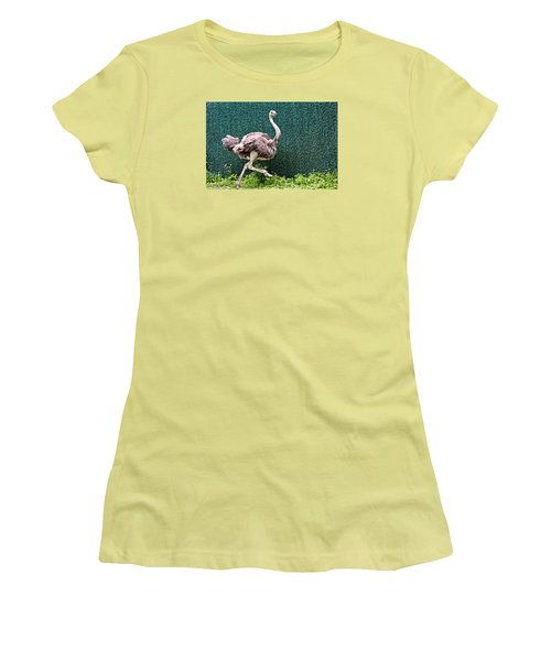 Women's T-Shirt (Junior Cut) featuring the photograph On The Run by Debra     Vatalaro
