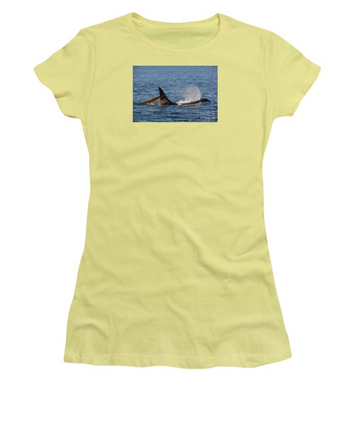 Women's T-Shirt (Junior Cut) featuring the photograph Onyx L87 by Gayle Swigart