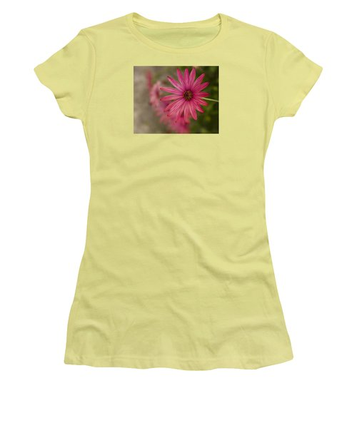 Women's T-Shirt (Junior Cut) featuring the photograph Osteospermum The Cape Daisy by Shirley Mitchell