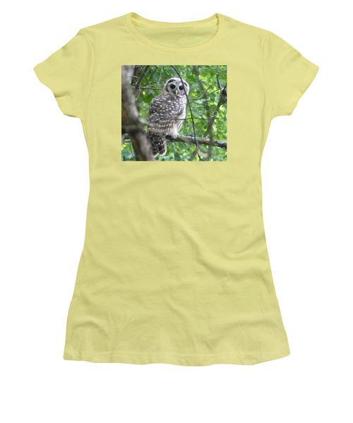 Owl On A Limb Women's T-Shirt (Junior Cut) by Donald C Morgan