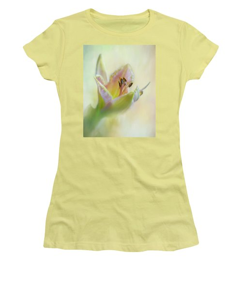 Painted Daylily Women's T-Shirt (Junior Cut) by David and Carol Kelly