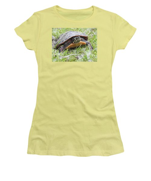 Painted Turtle Women's T-Shirt (Junior Cut) by Betty-Anne McDonald