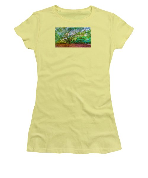 Panoramic Angel Oak Tree Charleston Sc Women's T-Shirt (Junior Cut) by John McGraw