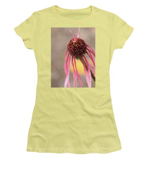 Pastel Perfection Women's T-Shirt (Junior Cut) by Deborah  Crew-Johnson