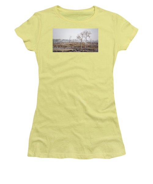 Paynton Pastures Women's T-Shirt (Junior Cut) by Ellery Russell