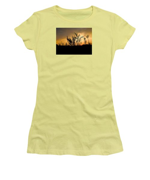 Peeking Out Women's T-Shirt (Junior Cut) by Tim Good