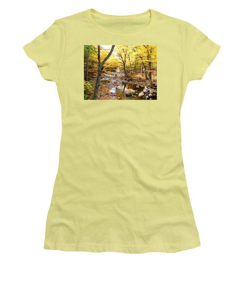 Pemigwasett River At The Flume Women's T-Shirt (Junior Cut) by Catherine Gagne