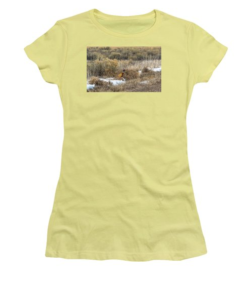 Women's T-Shirt (Junior Cut) featuring the photograph Pheasant Glory by Yeates Photography