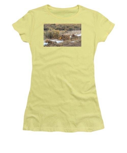 Pheasant Glory Women's T-Shirt (Junior Cut) by Yeates Photography
