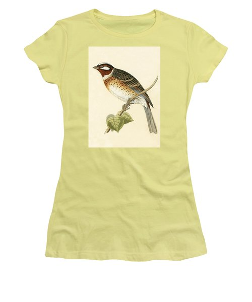 Pine Bunting Women's T-Shirt (Athletic Fit)