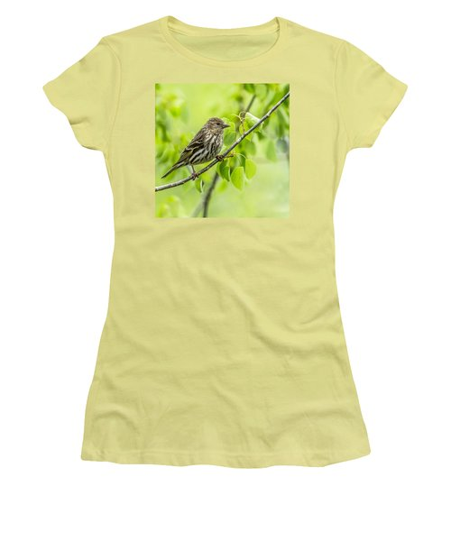 Pine Siskin On A Branch Women's T-Shirt (Junior Cut) by Yeates Photography