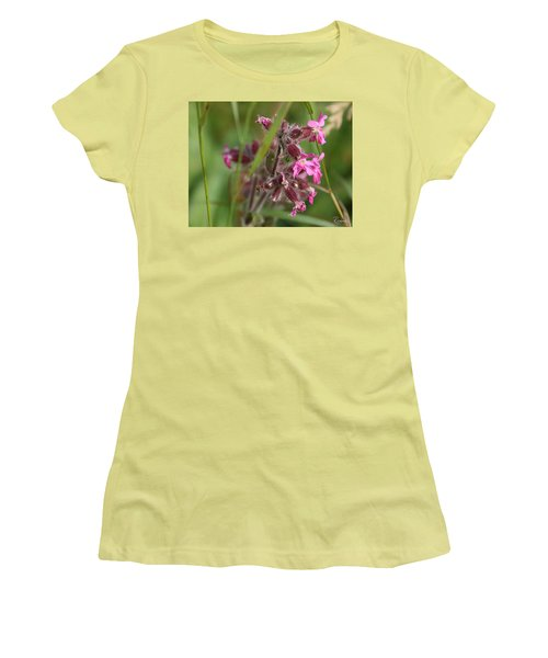 Pink Campion In August Women's T-Shirt (Athletic Fit)