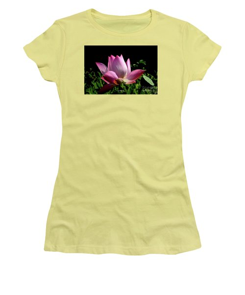 Pink Lotus  Women's T-Shirt (Junior Cut) by Jeannie Rhode