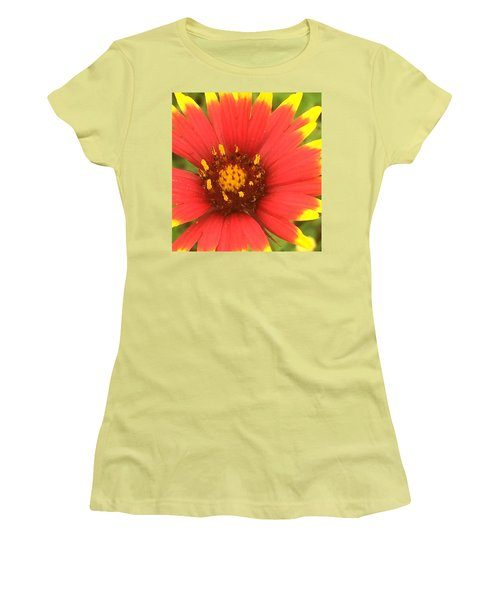 Pollinated Women's T-Shirt (Athletic Fit)