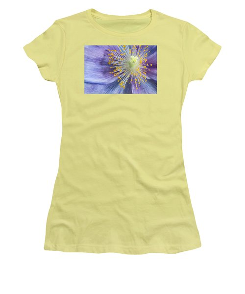 Poppy Fireworks Women's T-Shirt (Athletic Fit)