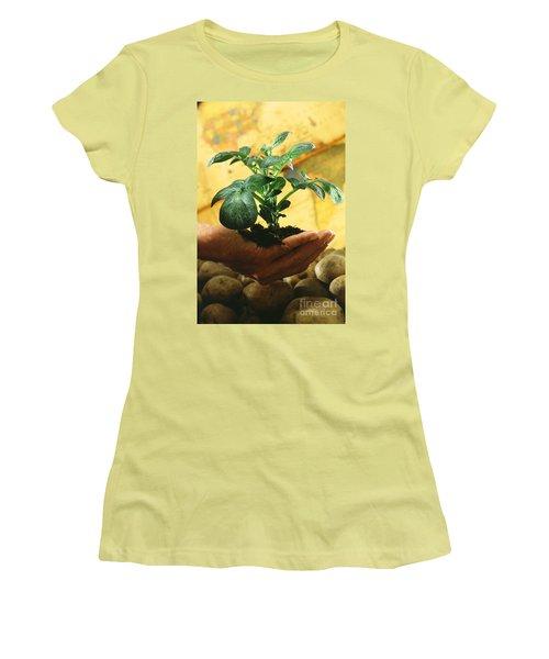 Potato Plant Women's T-Shirt (Junior Cut) by Science Source