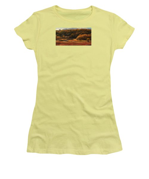 Prairie Autumn Stream No.2 Women's T-Shirt (Athletic Fit)