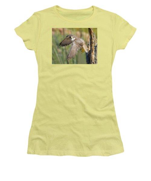 Prairie Falcon Taking Flight Women's T-Shirt (Athletic Fit)