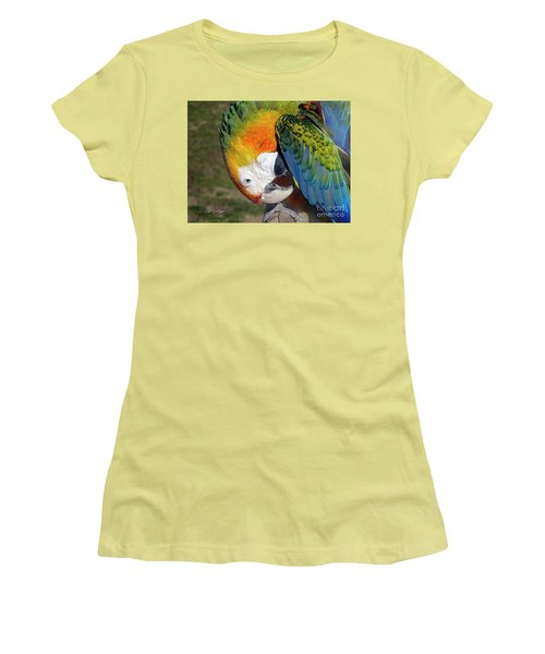 Preening Macaw Women's T-Shirt (Athletic Fit)