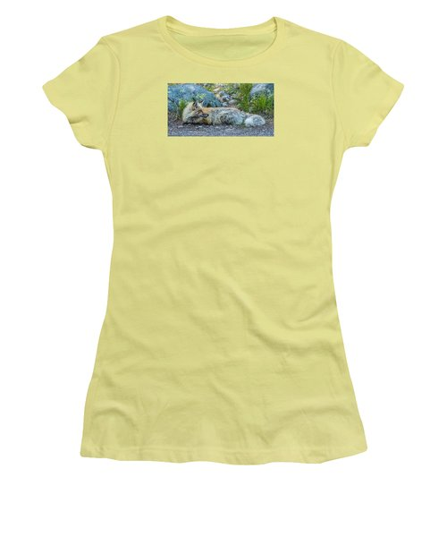 Women's T-Shirt (Junior Cut) featuring the photograph Pretty Boy Fox In Spring by Yeates Photography