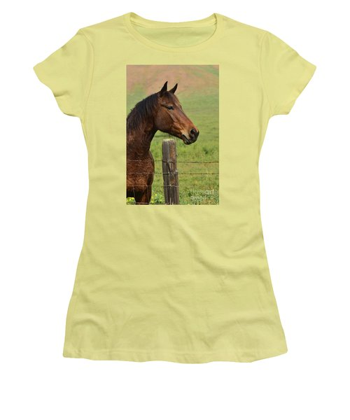 Women's T-Shirt (Junior Cut) featuring the photograph Profile Of A Bay by Debby Pueschel