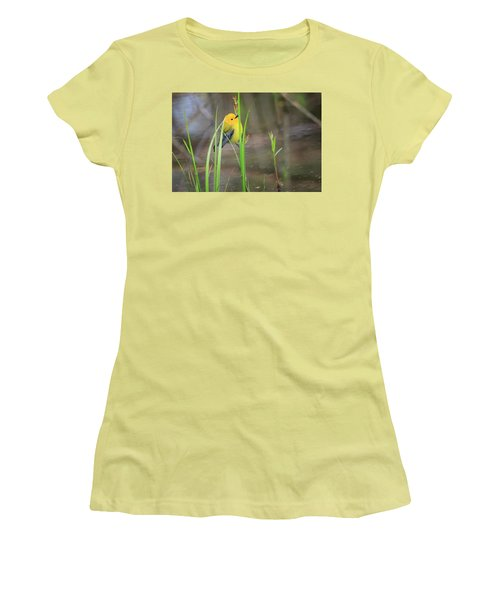 Prothonotary Warbler 5 Women's T-Shirt (Junior Cut) by Gary Hall