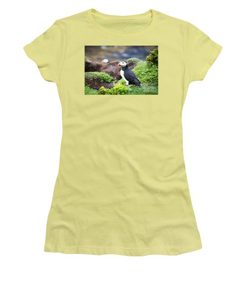 Puffin  Women's T-Shirt (Junior Cut) by Jane Rix