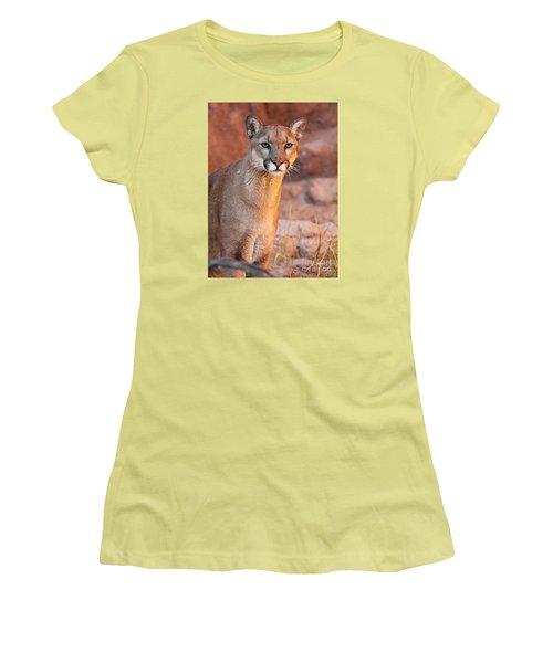 Women's T-Shirt (Junior Cut) featuring the photograph Puma At Sunset by Max Allen