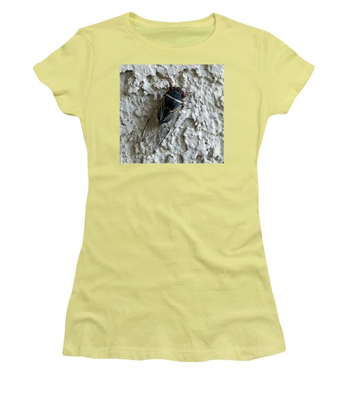 Putnam's Cicada Women's T-Shirt (Junior Cut) by Anne Rodkin