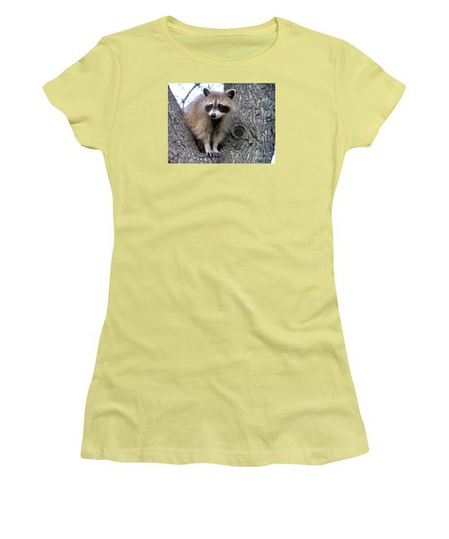 Raccoon Lookout Women's T-Shirt (Athletic Fit)