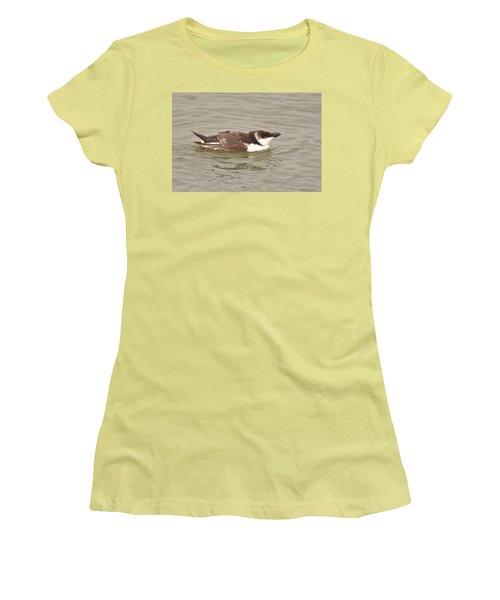Razorbill Women's T-Shirt (Junior Cut) by Alan Lenk