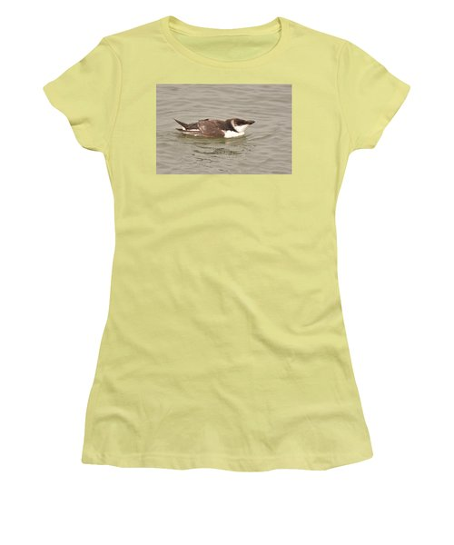 Razorbill Women's T-Shirt (Athletic Fit)