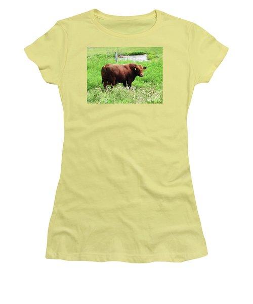 Red Angus Bull Women's T-Shirt (Junior Cut) by J L Zarek