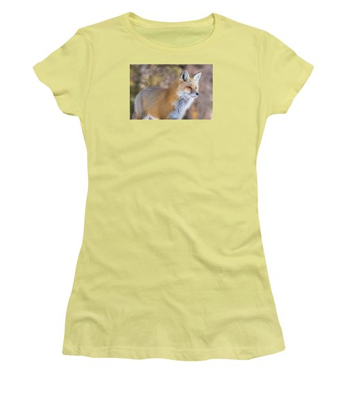 Women's T-Shirt (Junior Cut) featuring the photograph Red Fox In Winter Glow by Yeates Photography
