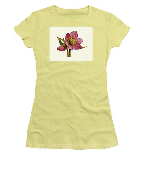 Red Hellebore Cream Background Women's T-Shirt (Junior Cut) by Paul Gulliver