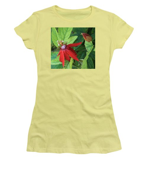 Red Passion Bloom Women's T-Shirt (Junior Cut) by Marna Edwards Flavell