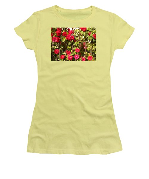 Red Roses In Summertime Women's T-Shirt (Athletic Fit)