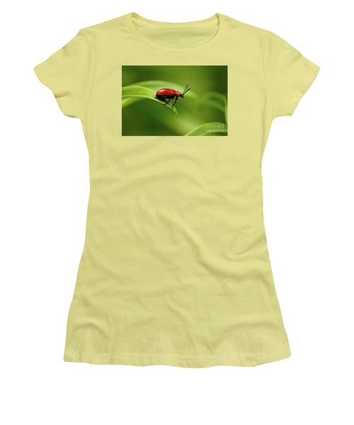Red Scarlet Lily Beetle On Plant Women's T-Shirt (Junior Cut) by Sergey Taran