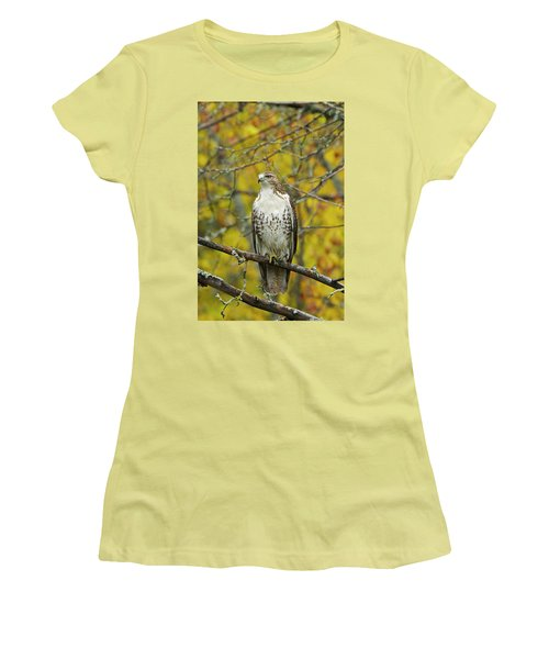Red Tail Hawk 9888 Women's T-Shirt (Junior Cut) by Michael Peychich