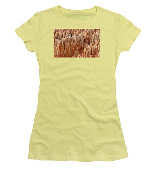 red Tsingy Madagascar 4 Women's T-Shirt (Junior Cut) by Rudi Prott