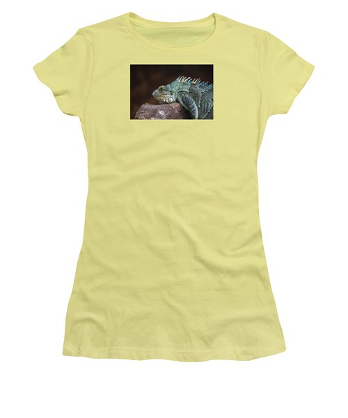 Reptile Women's T-Shirt (Junior Cut) by Daniel Precht