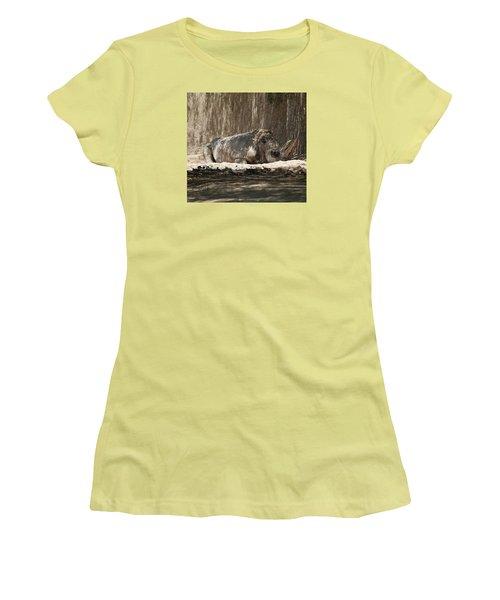 Rhino Women's T-Shirt (Junior Cut) by Walter Chamberlain