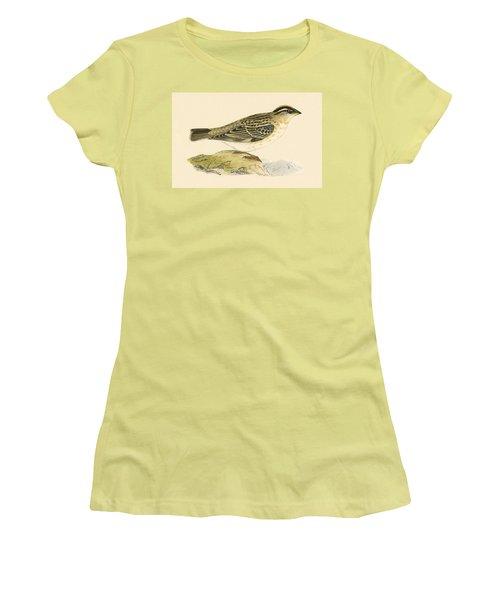 Rock Sparrow Women's T-Shirt (Junior Cut) by English School