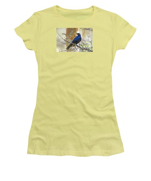 Women's T-Shirt (Junior Cut) featuring the photograph Ruppels Glossy Starling by Pravine Chester