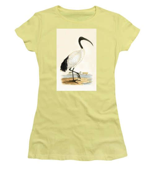 Sacred Ibis Women's T-Shirt (Junior Cut) by English School