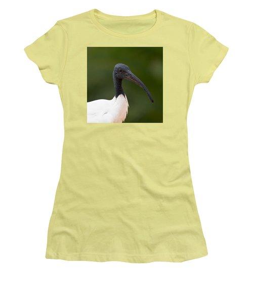 Sacred Ibis Women's T-Shirt (Junior Cut) by Jouko Lehto
