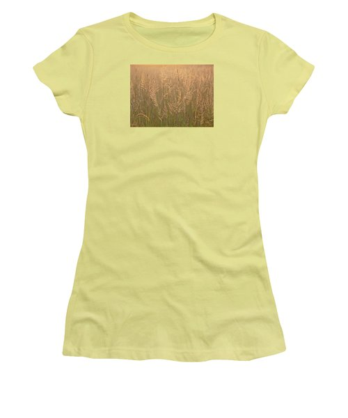 Sacred Morning Women's T-Shirt (Junior Cut) by Tim Good