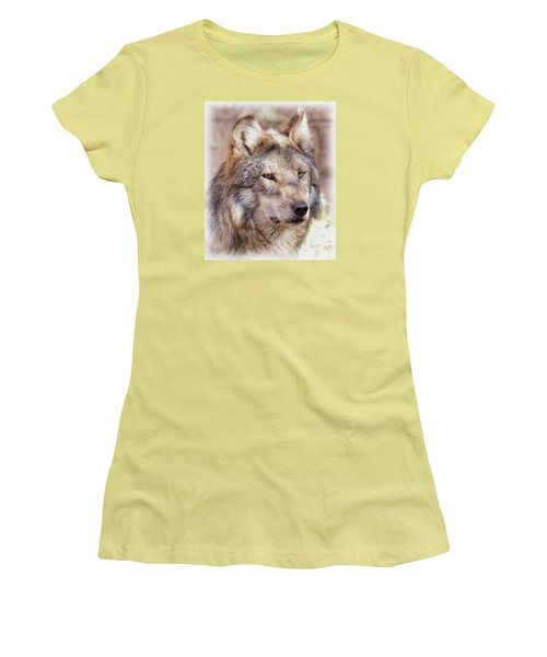 Sancho Women's T-Shirt (Junior Cut) by Elaine Malott