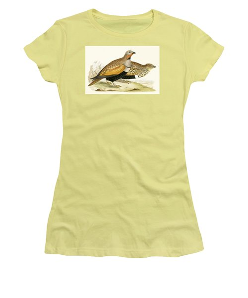 Sand Grouse Women's T-Shirt (Junior Cut) by English School